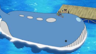 口袋妖怪漆黑的魅影吼吼鲸在哪抓?漆黑的魅影吼吼鲸捕抓介绍