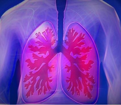 日本研发人工肺有什么作用?人工肺是什么