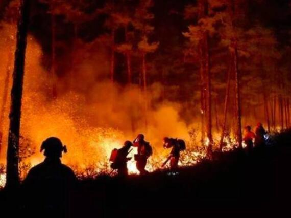 云南丽江森林火灾是什么情况?云南丽江森林火灾怎么引起的