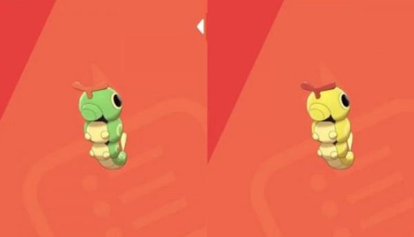 口袋妖怪:宝可梦绿毛虫详细图鉴
