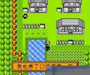 宠物小精灵 (红版) 简体中文 手机版