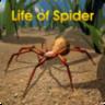 喂蜘蛛日常模拟器