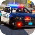 POLICE SIM