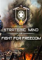 戰略思維:為自由而戰未加密直裝版
