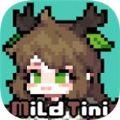 迈尔德提尼手机游戏安卓版