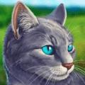 猫咪3D模拟