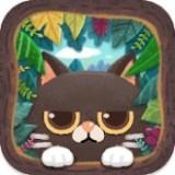秘密猫森林