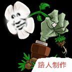 植物大战僵尸鉴版