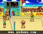 美国沙滩排球锦标赛 (U.S. Championship V'ball )ROM