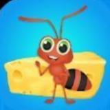 放置蚂蚁生活
