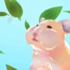 仓鼠吃叶子比赛